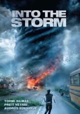 Audros sūkuryje DVD