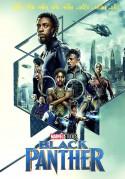 Juodoji pantera DVD
