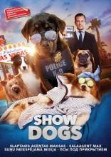 Slaptasis agentas Maksas DVD