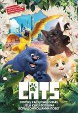 Didysis kačių pabėgimas DVD