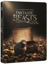 Fantastiniai gyvūnai ir kur juos rasti Blu-ray + 3D