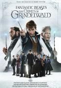 Fantastiniai gyvūnai: Grindelvaldo piktadarystės DVD